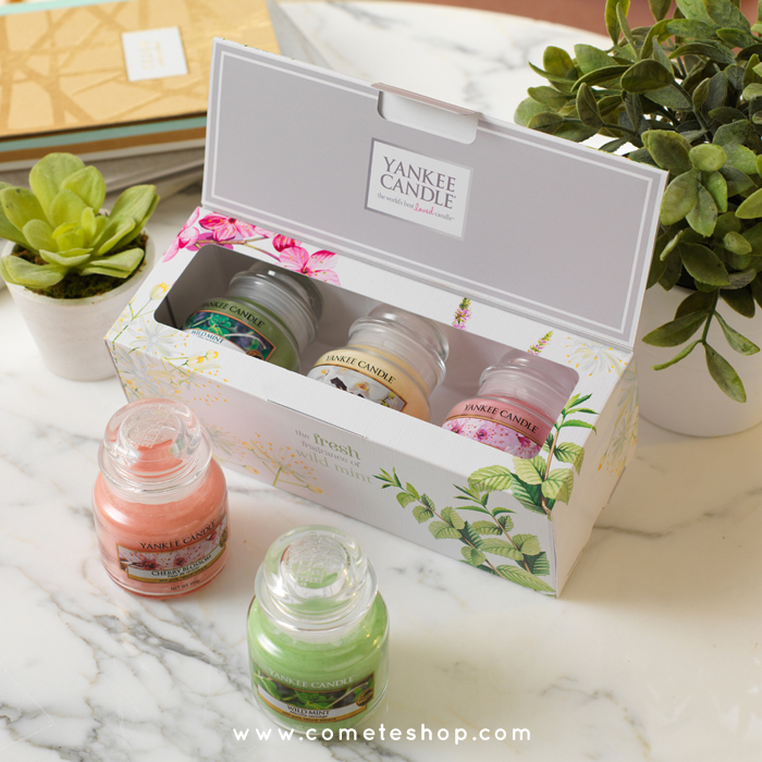 coffret-3-petites-jarres-yankee-candle-collection-pure-essence