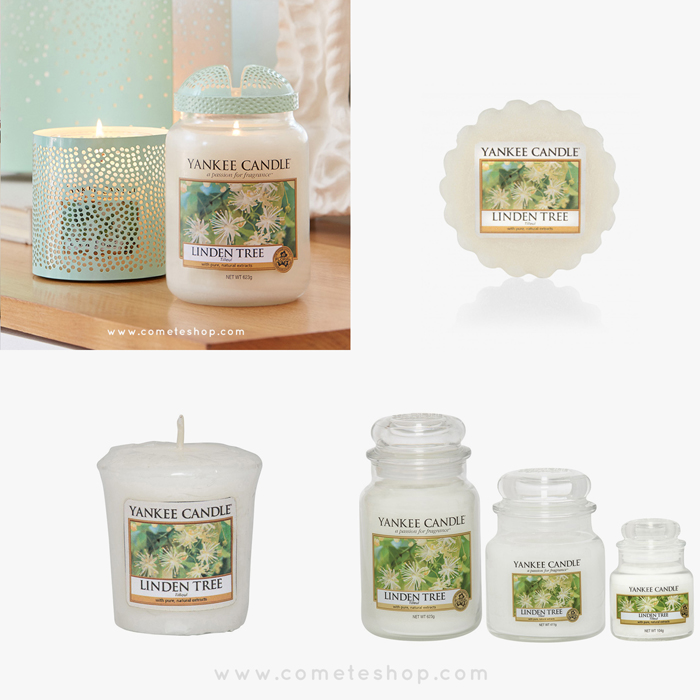 nouvelle-collection-pure-essence-bougie-yankee-candle-parfum-linden-tree-tilleul