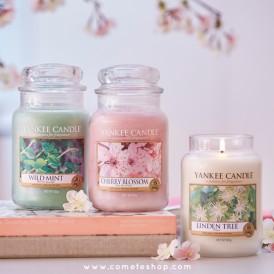 nouvelle-collection-pure-essence-bougies-yankee-candle-test-senteur-revue