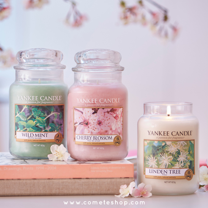 nouvelle-collection-pure-essence-bougies-yankee-candle-test-senteur-revue