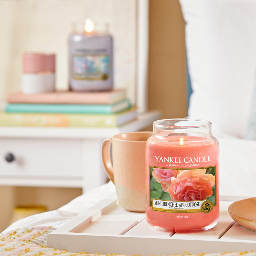 bougie sun drunched apbricot rose rose suculente yankee candle