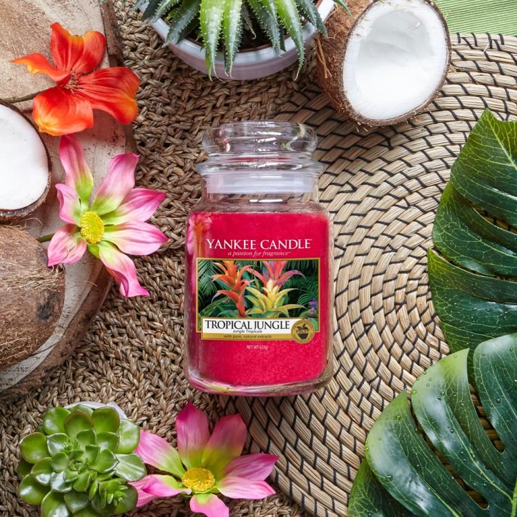 nouveau parfum yankee candle tropical jungle just go ete 2018